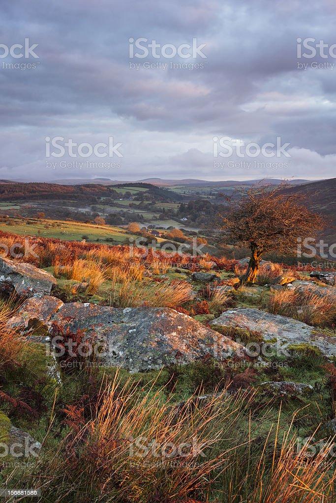 Dartmoor Landscape royalty-free stock photo