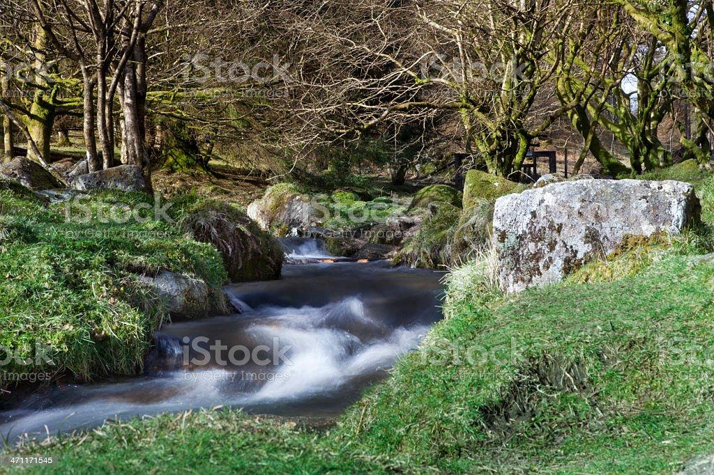 Dartmoor national park royalty-free stock photo