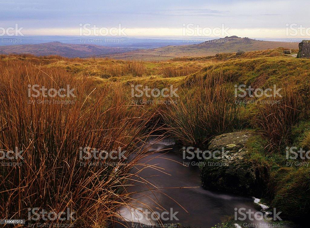 Dartmoor, UK, typical moorland scene stock photo