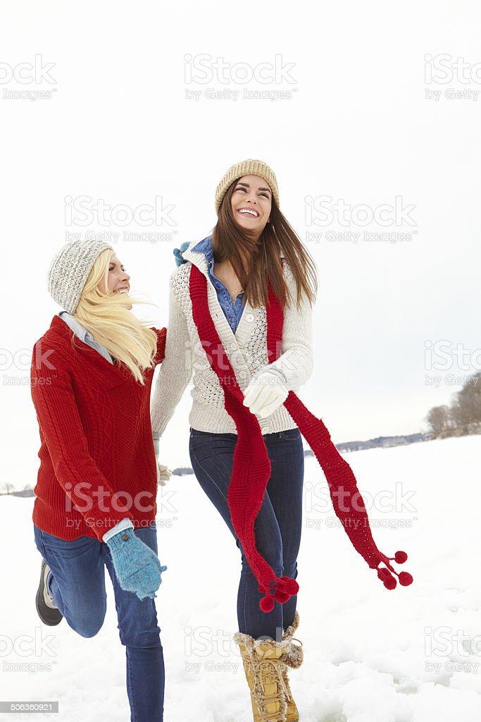 Dashing through the snow royalty-free stock photo