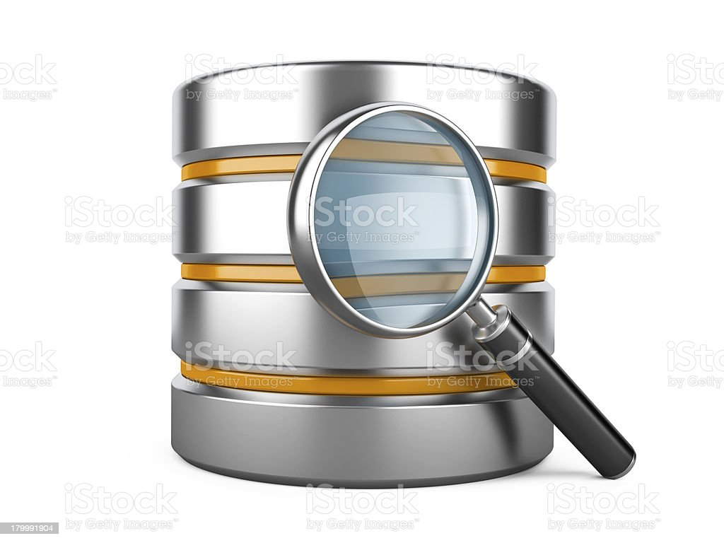 Database with Magnifier royalty-free stock photo