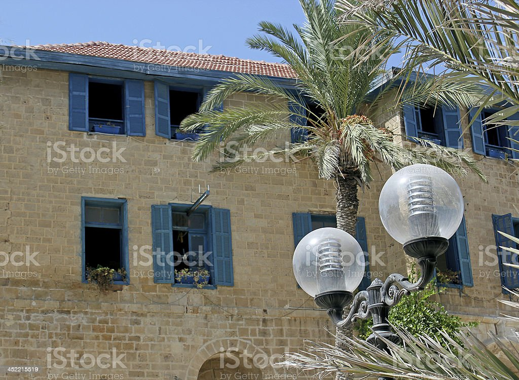 date palm and lantern royalty-free stock photo