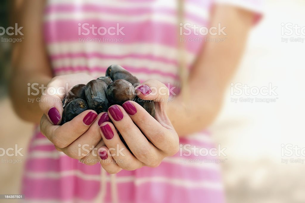 Dates in palm of hand royalty-free stock photo