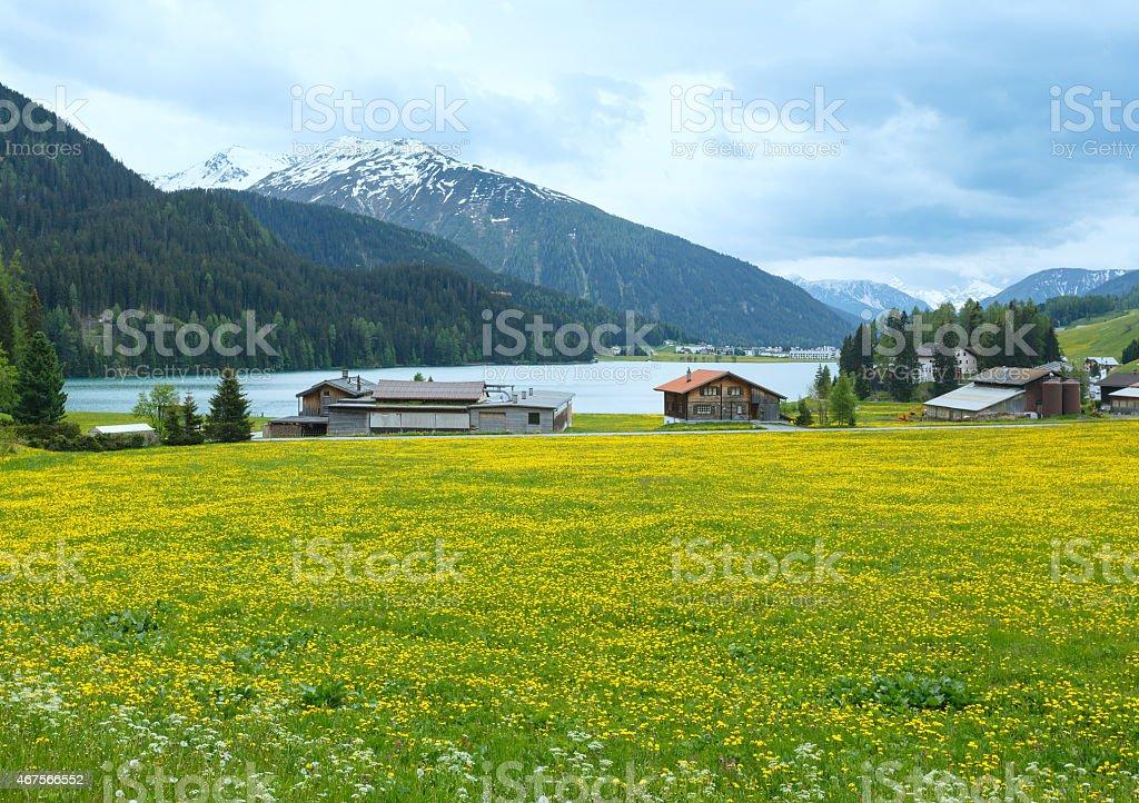 Davos Lake summer view. stock photo