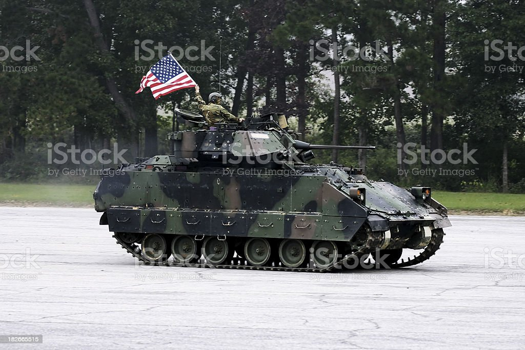 Dawg in a Tank royalty-free stock photo