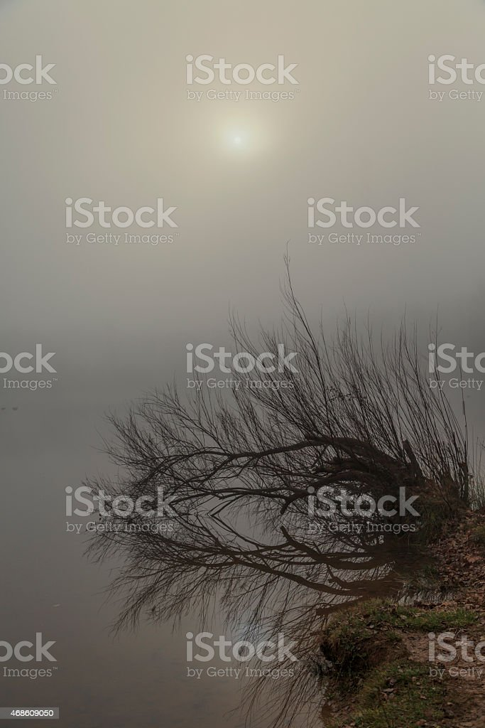 Dawn at El Bergueda stock photo