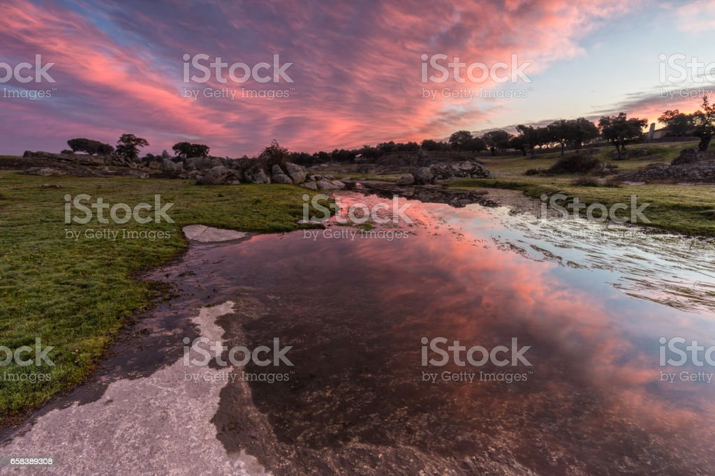 Dawn in a lagoon stock photo