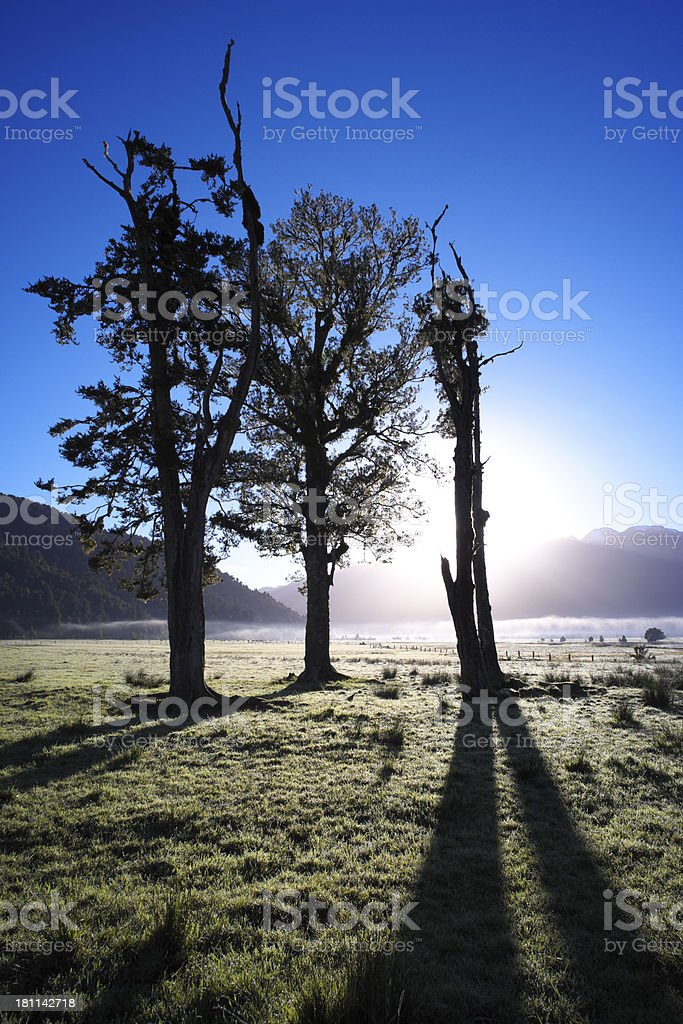 Dawn In New Zealand stock photo
