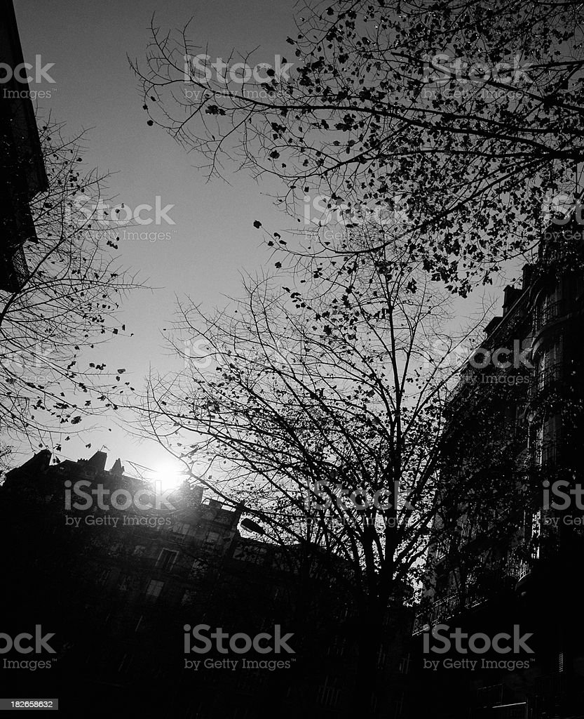 Dawn in Paris, France. royalty-free stock photo