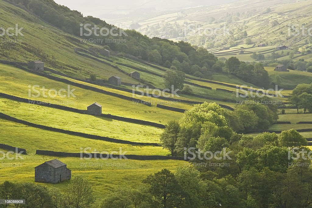 Dawn in Swaledale stock photo