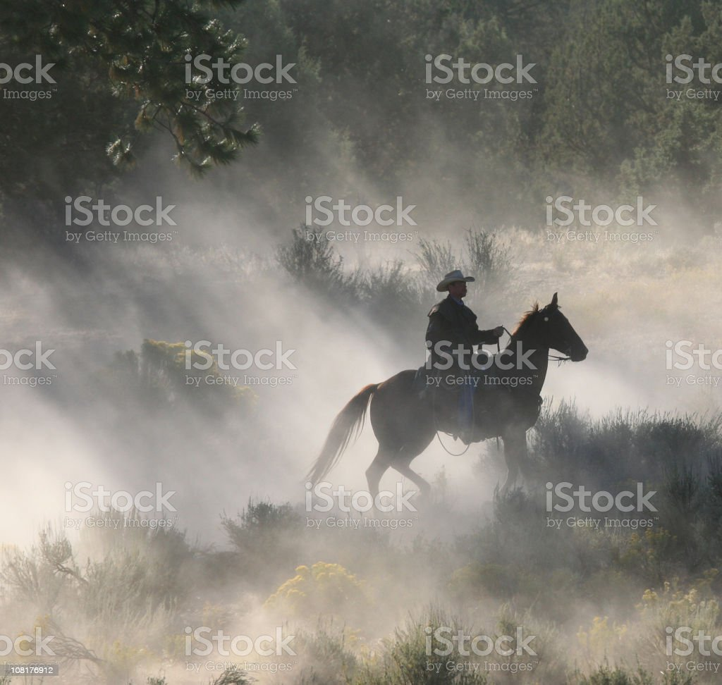 Dawn light and shadows on a lone Cowboys royalty-free stock photo