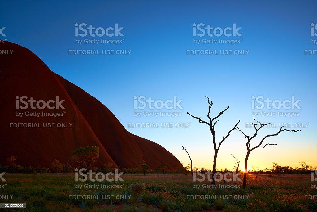 Dawn Light At Uluru stock photo