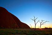 Dawn Light At Uluru