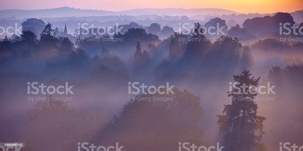 Dawn Mist In The Surrey Hills stock photo