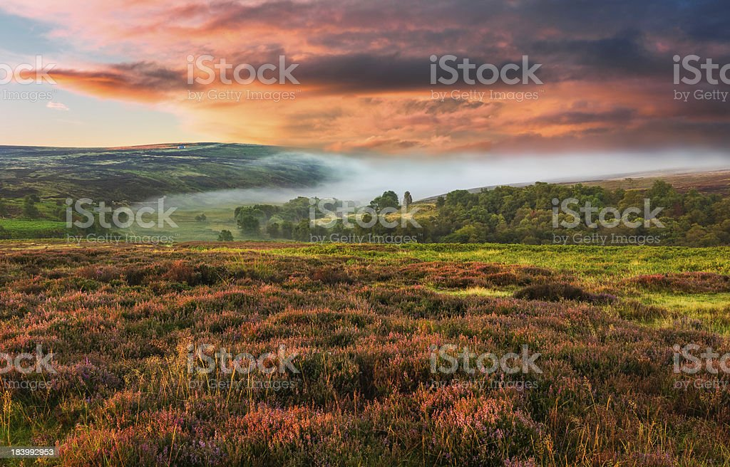 Dawn mist over the North York Moors, Yorkshire, UK. stock photo