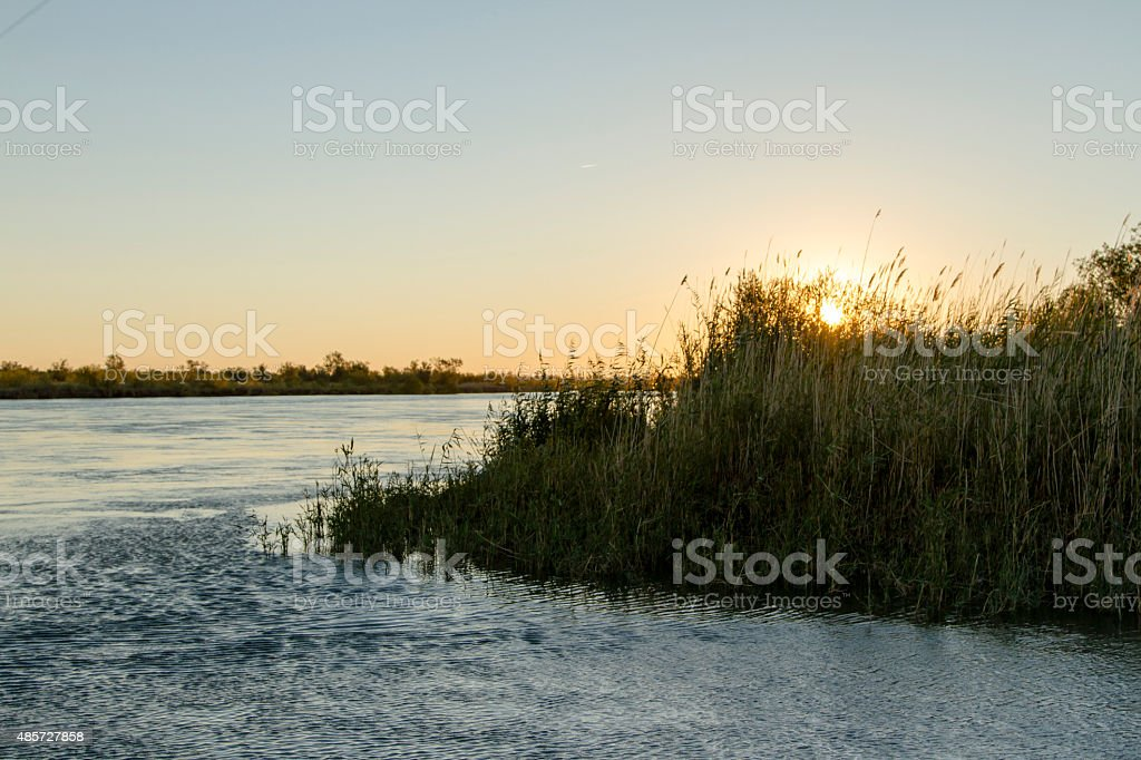 Dawn over the river stock photo