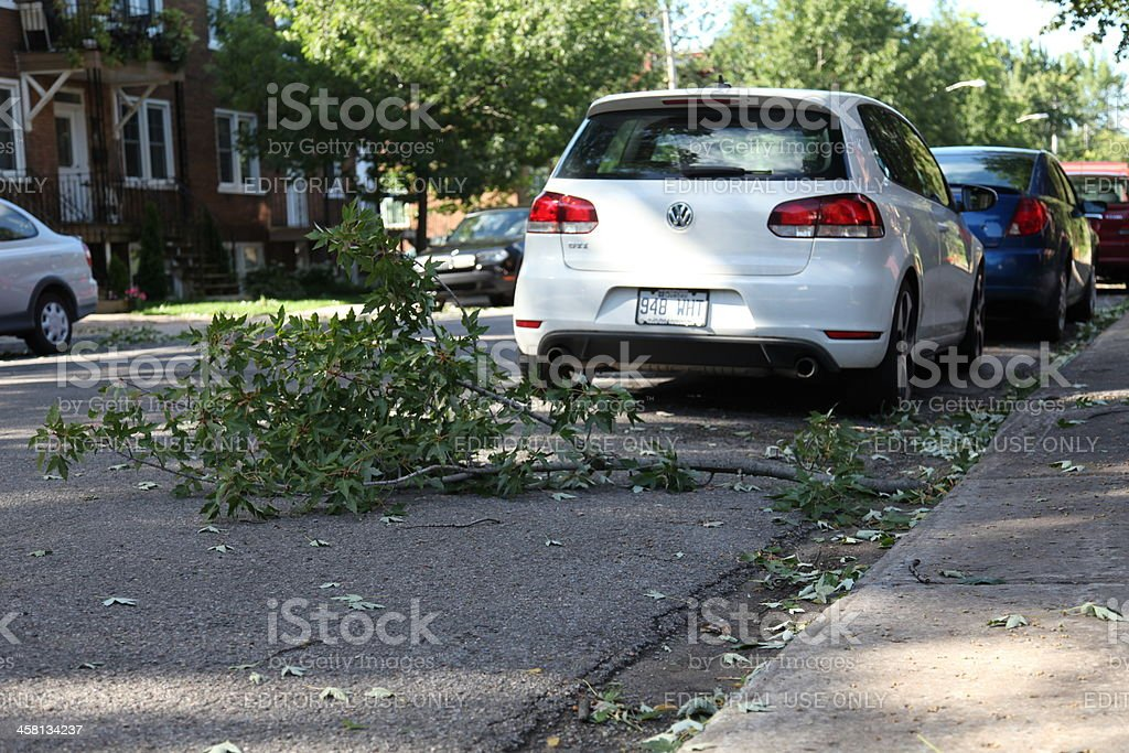 Day after hurricane 'Irene' in Quebec City, Canada royalty-free stock photo