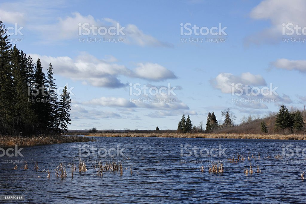Day at the lake royalty-free stock photo