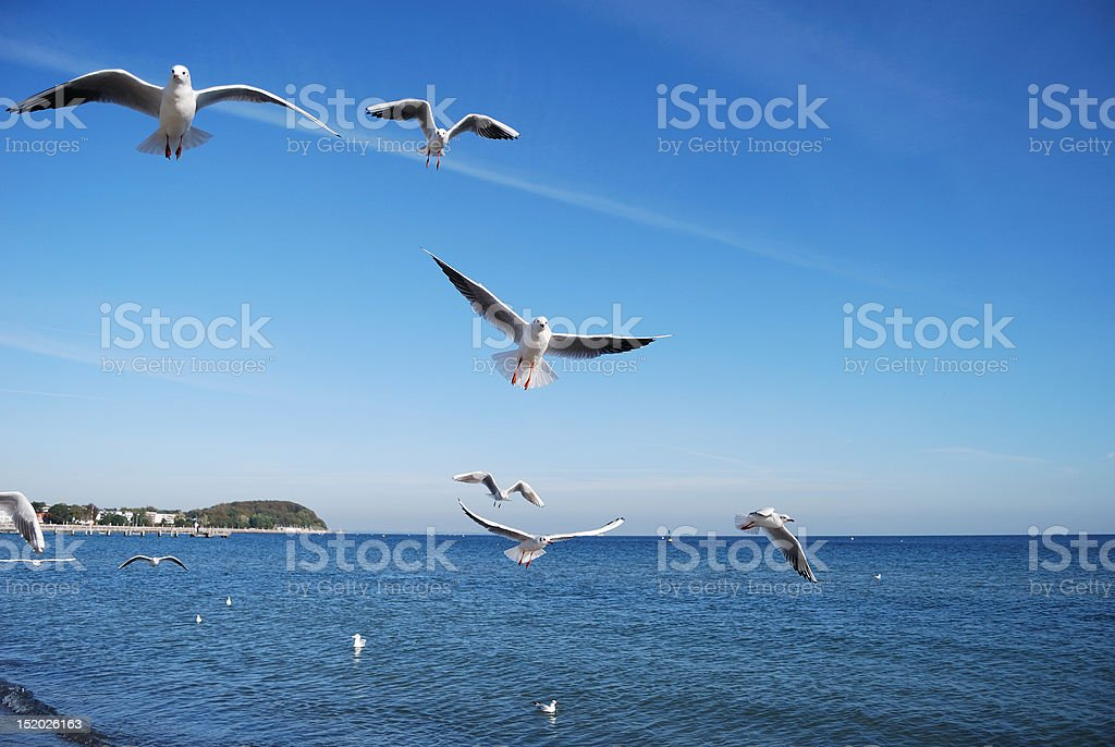 day by the sea stock photo