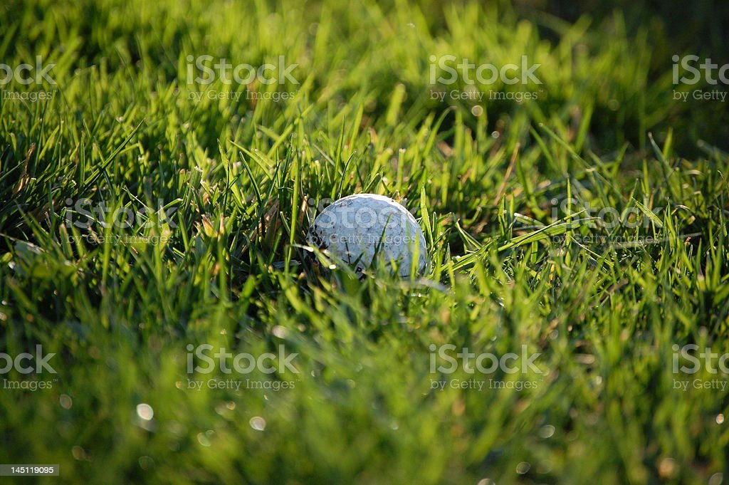 Day Golf stock photo