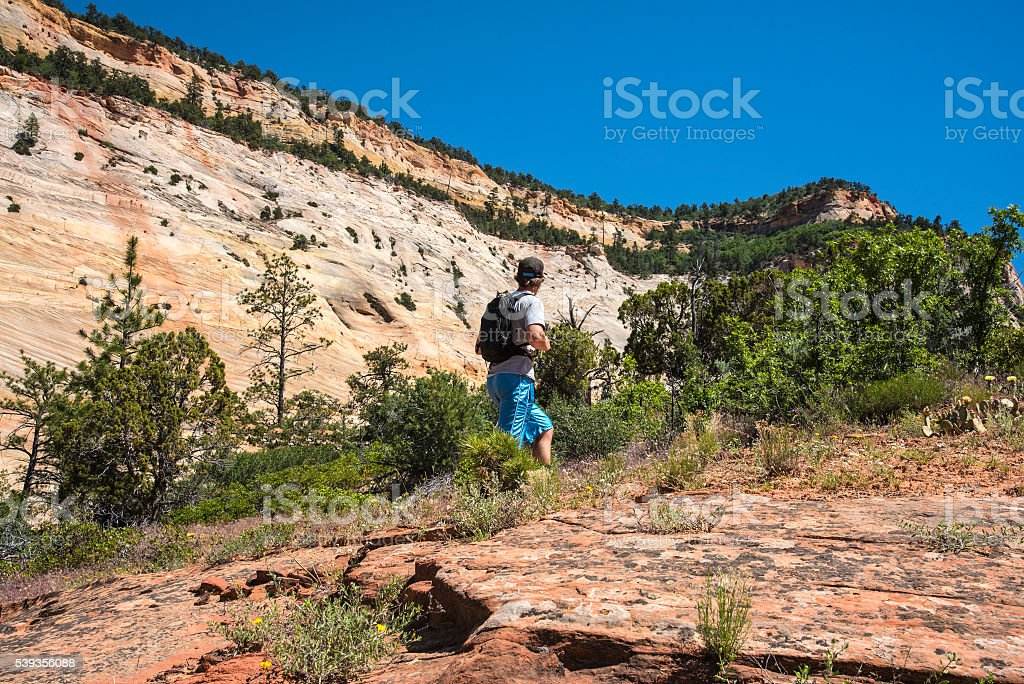 Day Hike in Zion stock photo