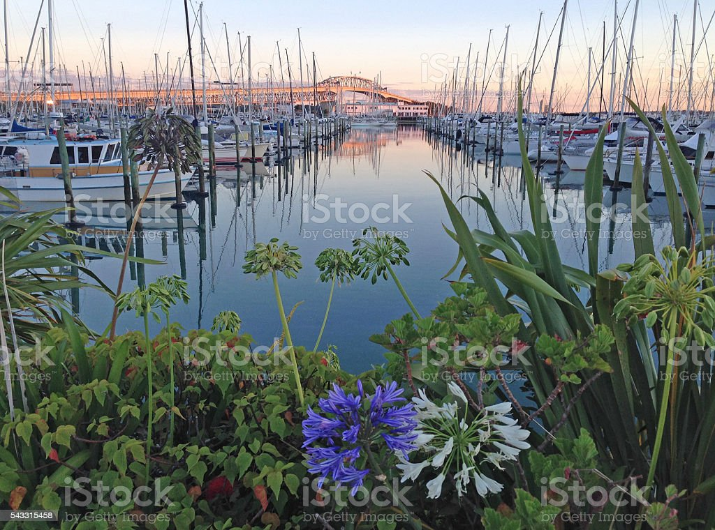 Day is dawning at the marina stock photo