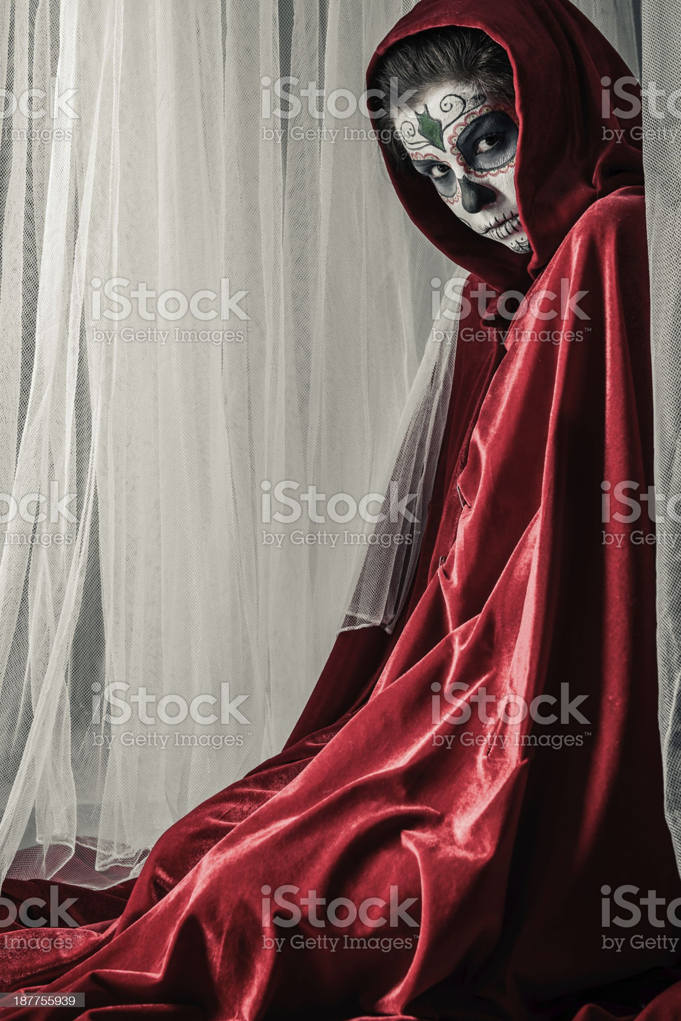 Day of the dead girl royalty-free stock photo