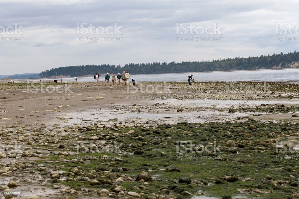 Day out royalty-free stock photo