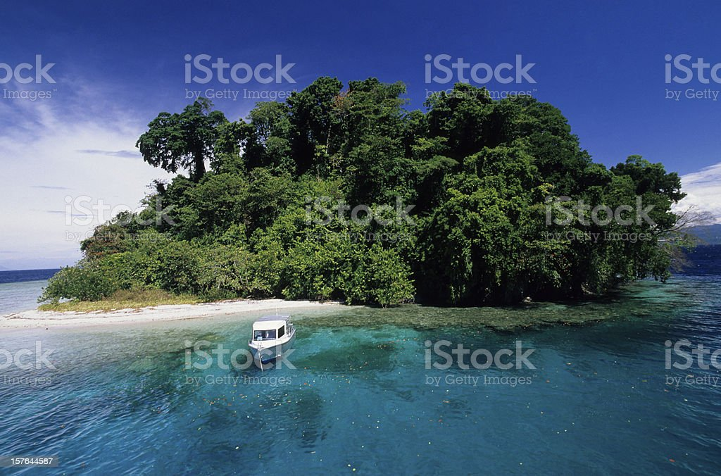 Day Trippers on Tropical Island stock photo