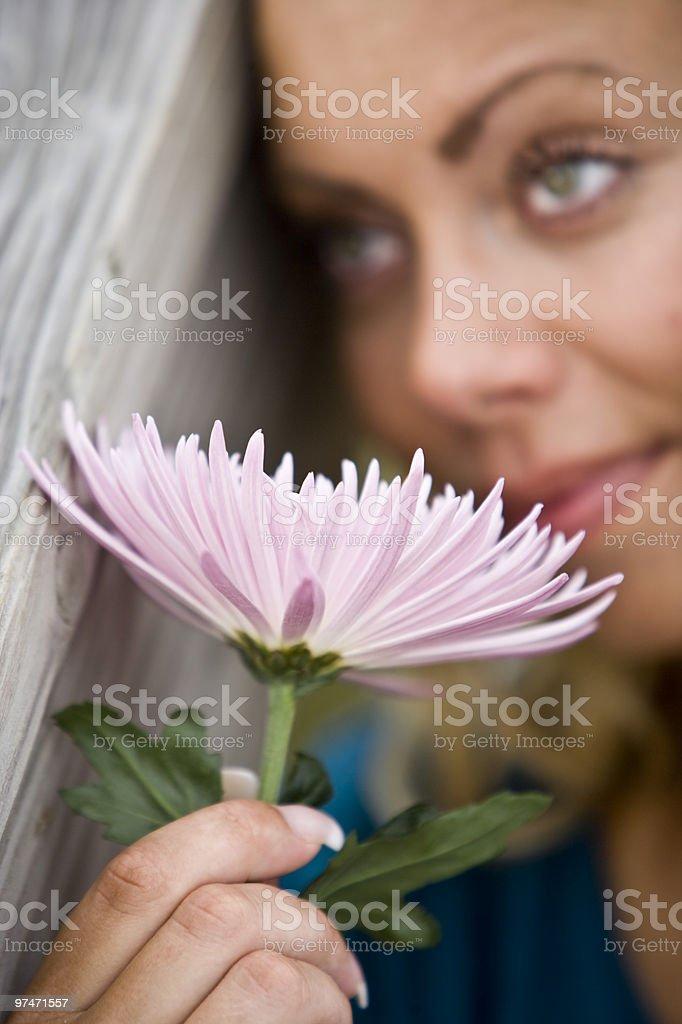 Daydreaming mujer agarrando rosa flor foto de stock libre de derechos