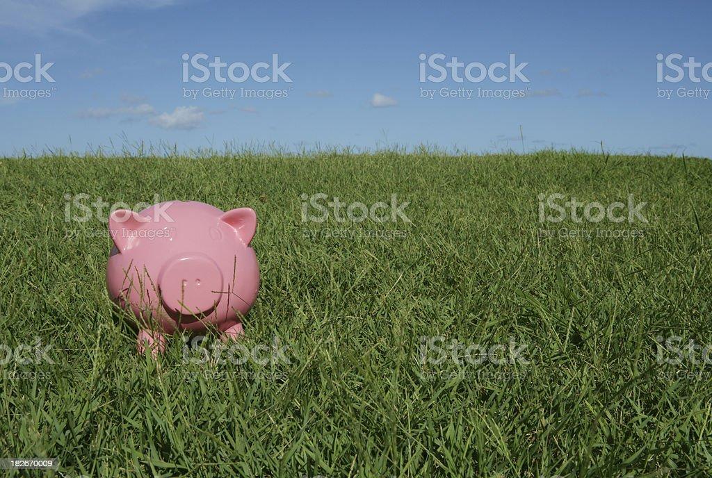 Daylight Savings royalty-free stock photo