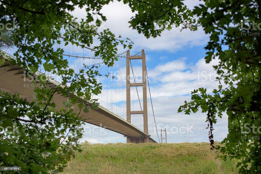 Daytime view of the Humber Bridge through foliage stock photo