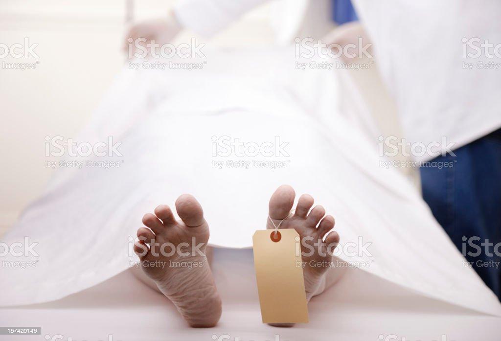 Dead Body stock photo