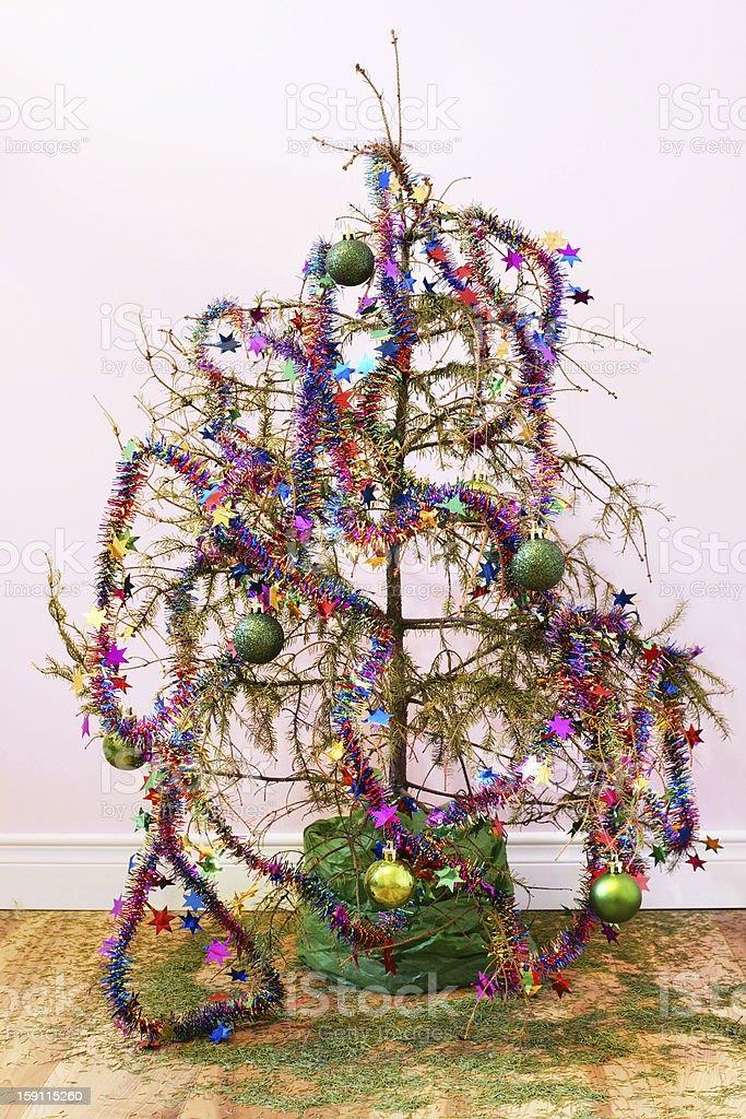 Dead Christmas tree stock photo