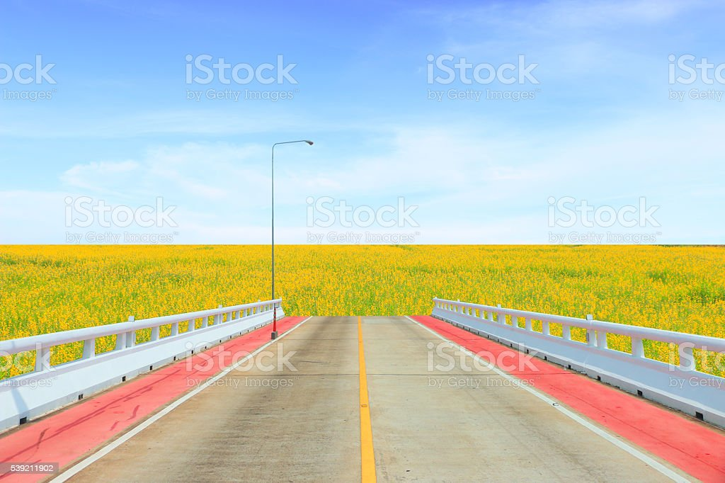 Dead End,End of the road stock photo