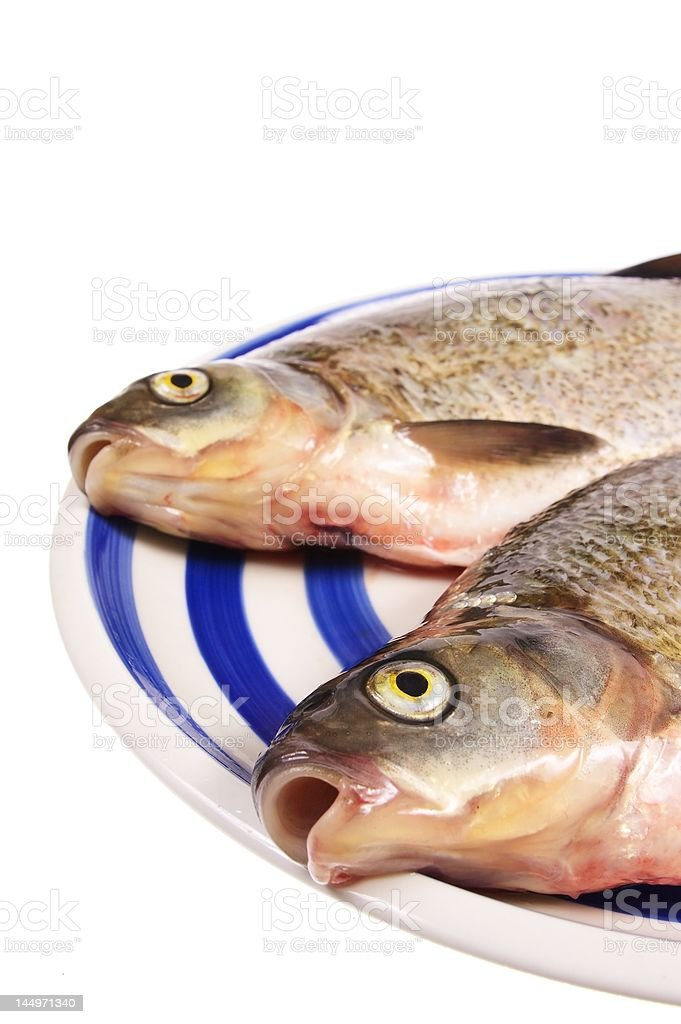 Dead fish on plate royalty-free stock photo
