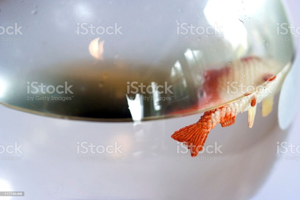 Dead Goldfish stock photo