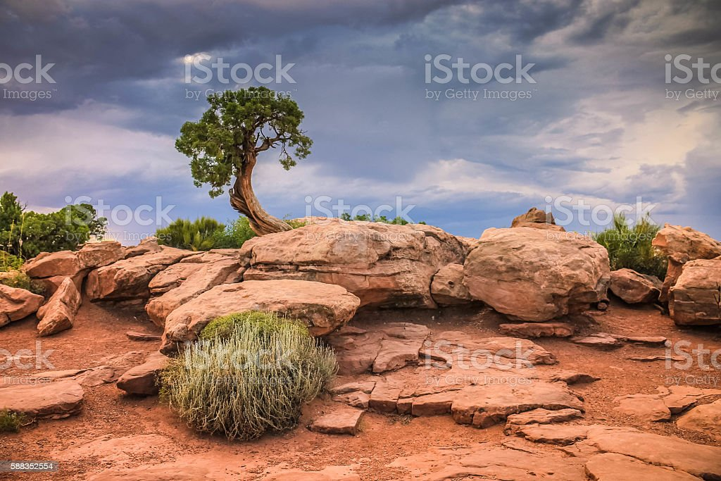 Dead Horse Lookout.Canyonlands.Utah stock photo