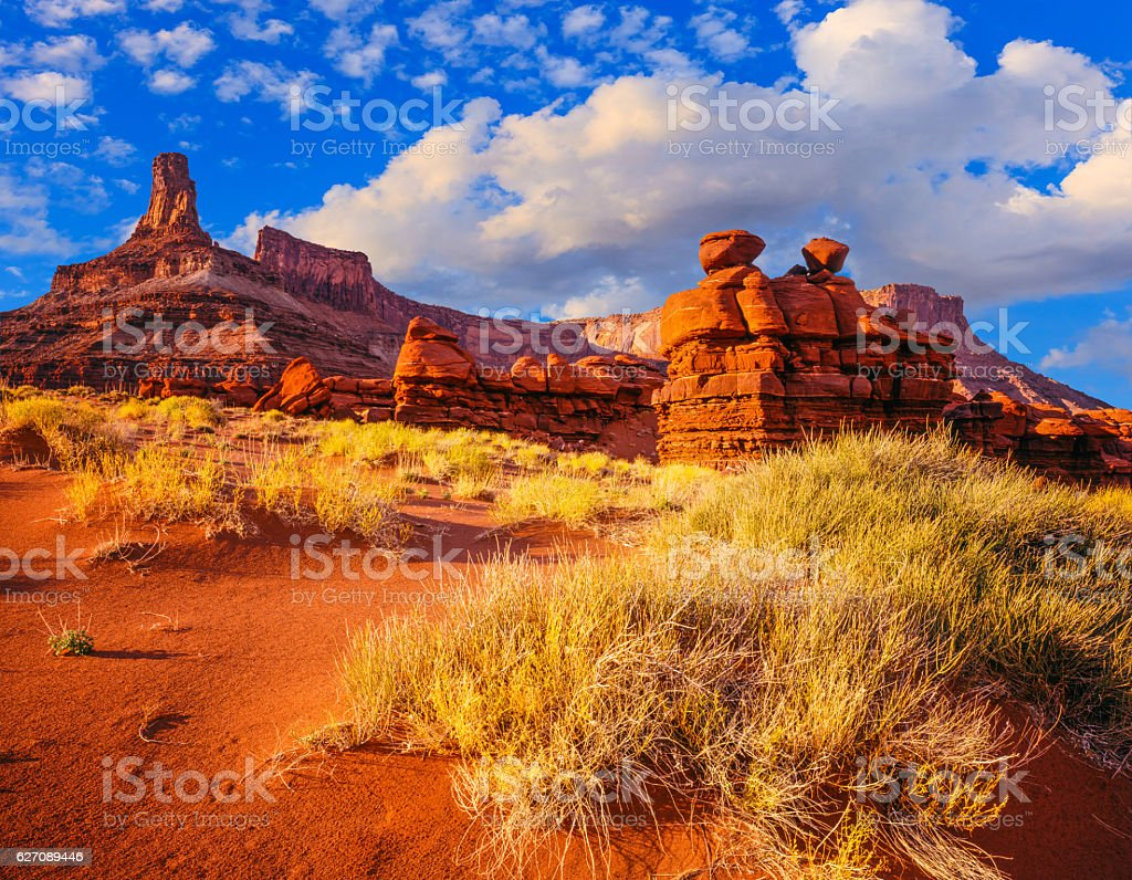 Dead Horse Point State Park from BLM LAND, Utah(P) stock photo