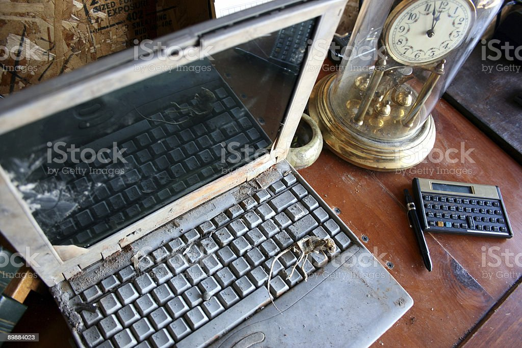 Dead mouse lying on keyboard of rusted laptop computer stock photo