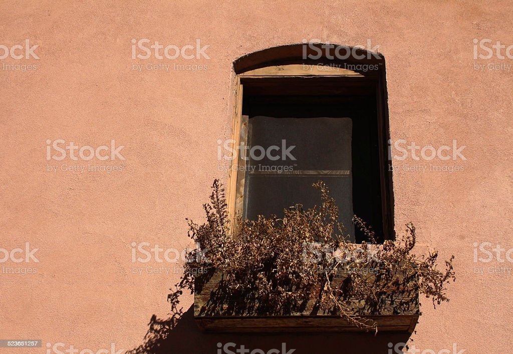 Dead plants in window box, pink stucco stock photo