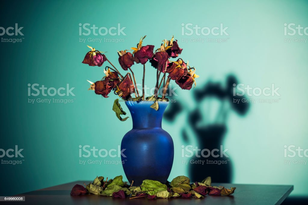 Dead roses in a vase on table stock photo