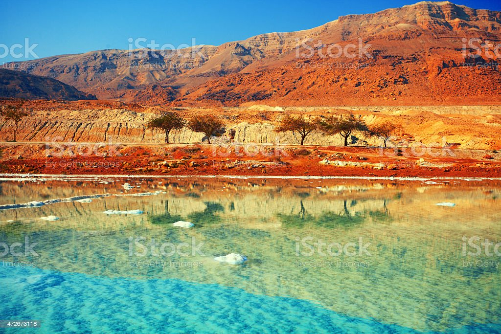 Dead sea salt shore stock photo