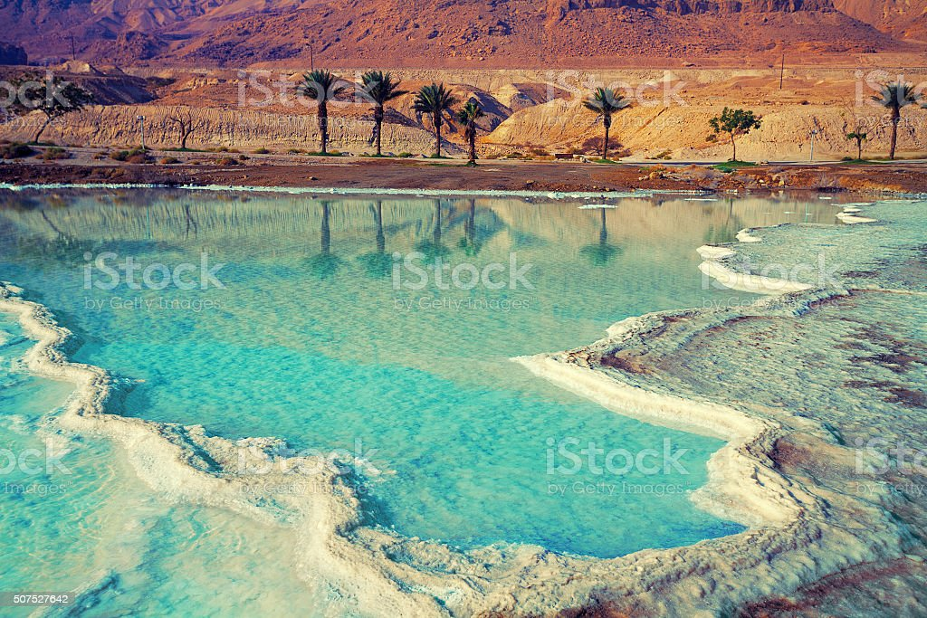 Dead sea salt shore stock photo