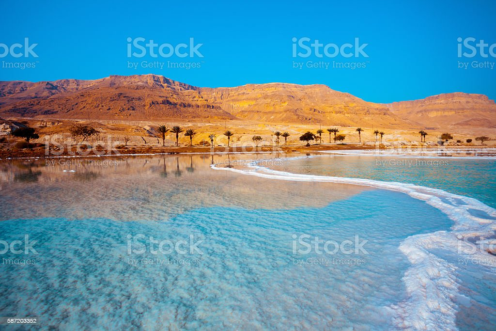 Dead Sea seashore with palm trees and mountains on background stock photo