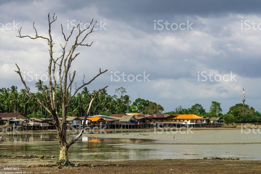Dead Tree Fishing Village Old Town Bay Koh Lanta Thailand stock photo
