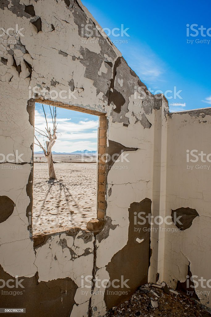 Dead tree through broken window stock photo