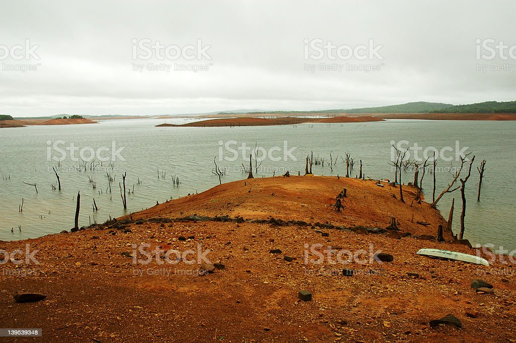 Dead trees at honnemoradu royalty-free stock photo