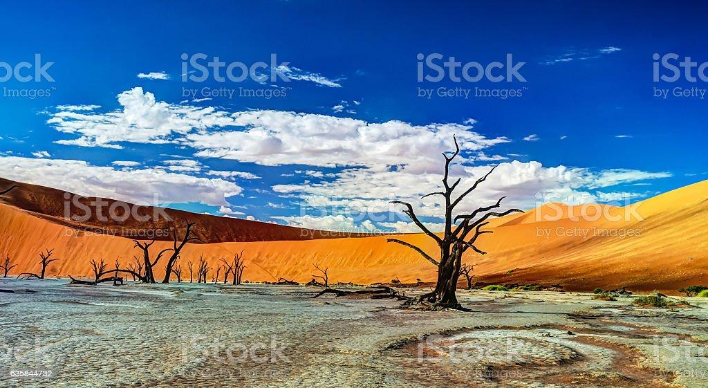 Deadvlei in Namib-Naukluft national park, Sossusvlei, Namibia stock photo