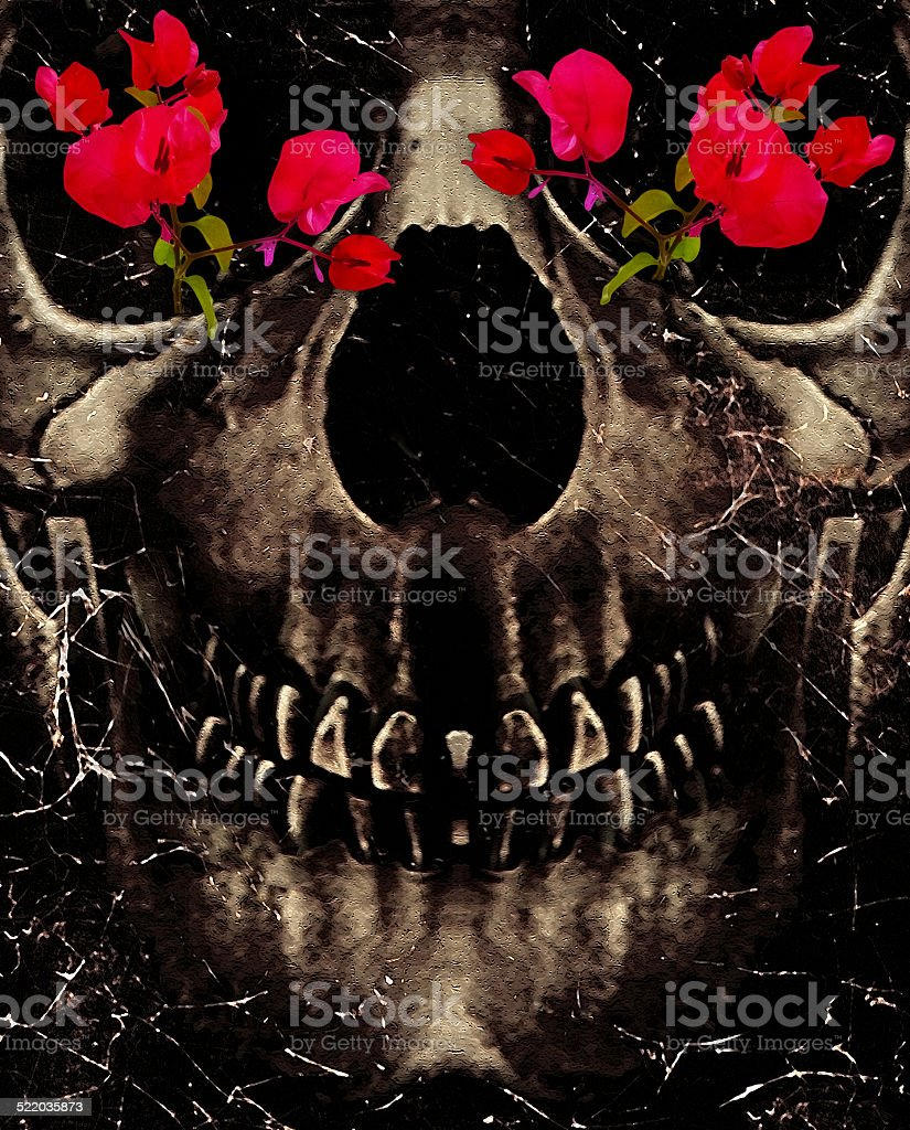 Death and Flowers stock photo